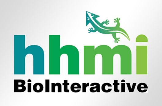 BioInteractive Evaluation Studies