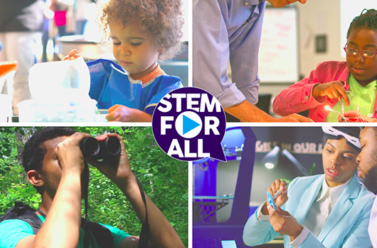 Project: STEM for all Video Showcase