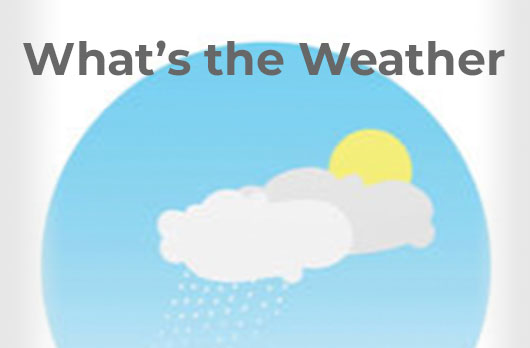 What's the Weather? Unit eBooks