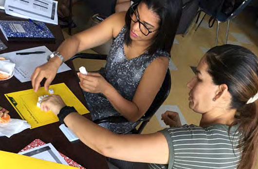 Enhancing and Empowering: Doing the Math with Paraeducators, a Mathematics Professional Development Model for PreK to Grade 3