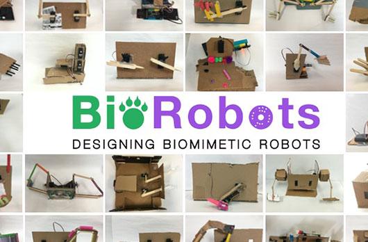 BioRobots